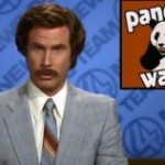 anchorman-pandawatch_528_poster-300x158